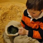 Playing with a puppet in the dinosaur nest