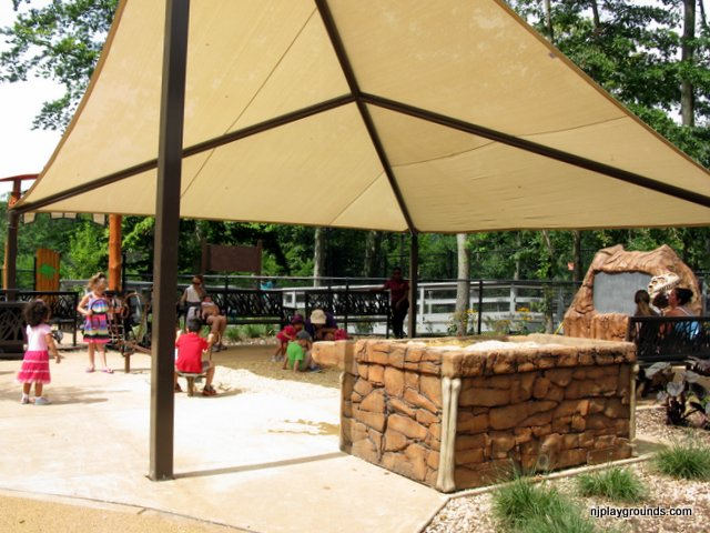Canopy area includes water table, digging area